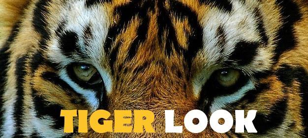 tigerlook